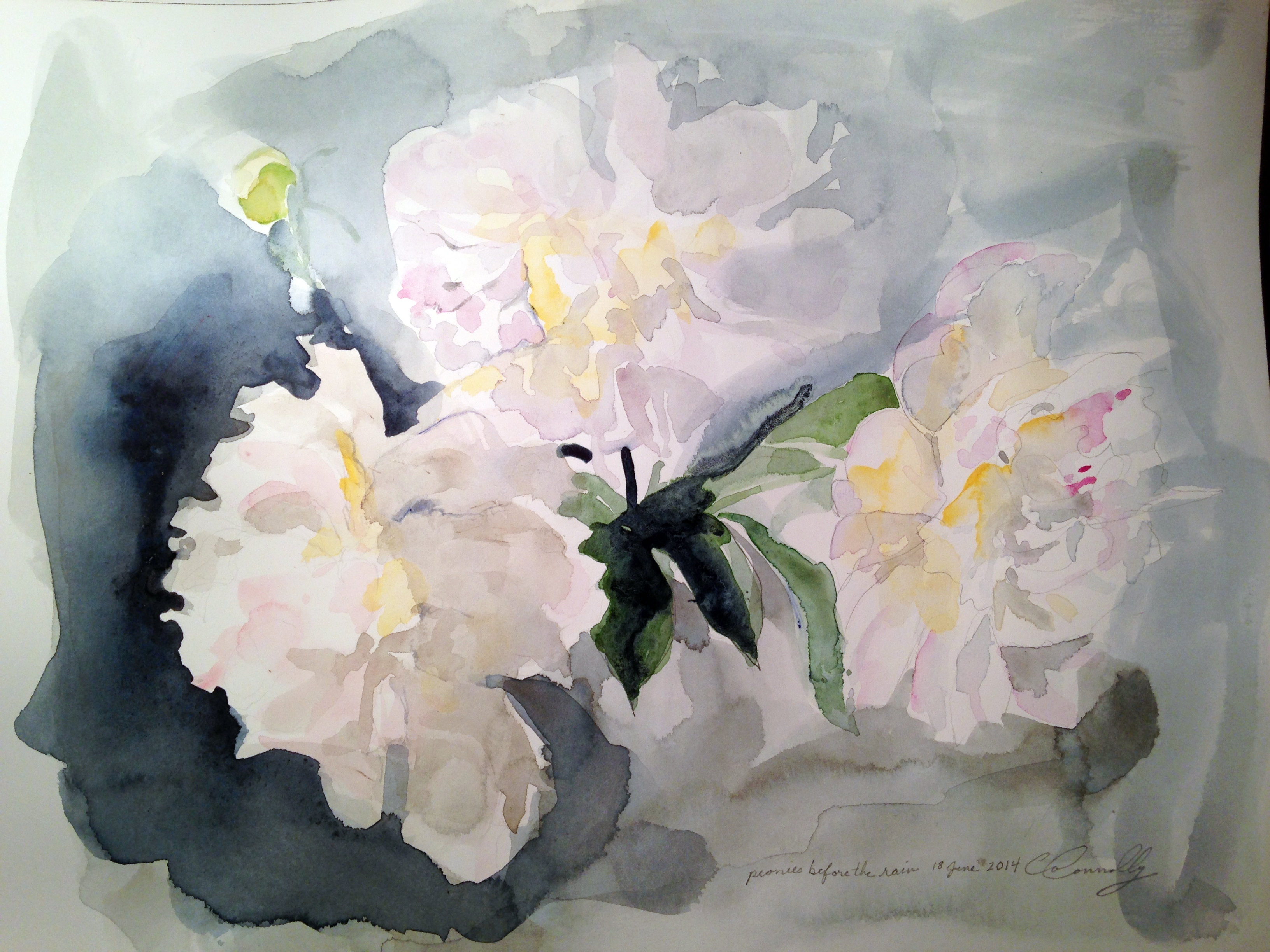 cocoConnolly_2014Peonies