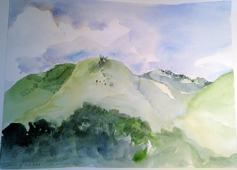 hills of Waimea