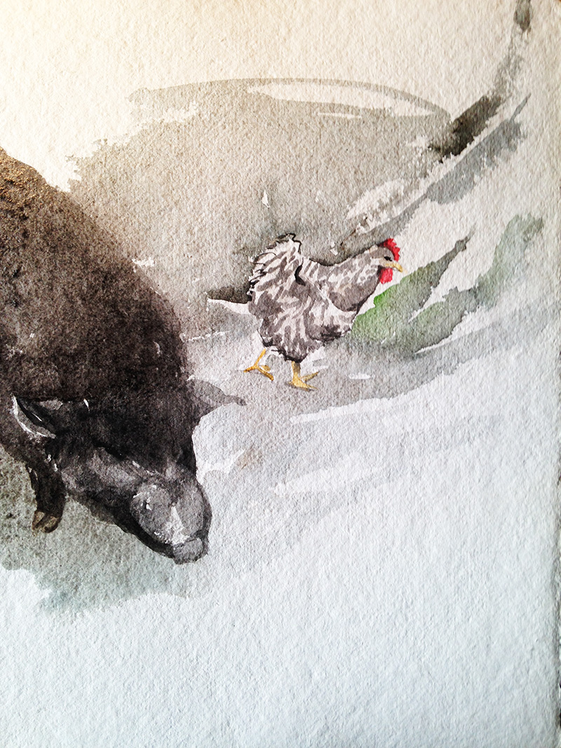 painting pigs and chickens