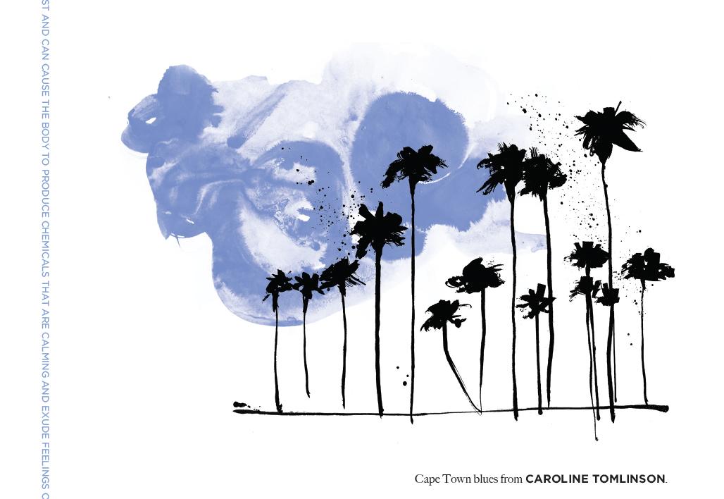 caroline tomlinson, new artist at Friend and Johnson