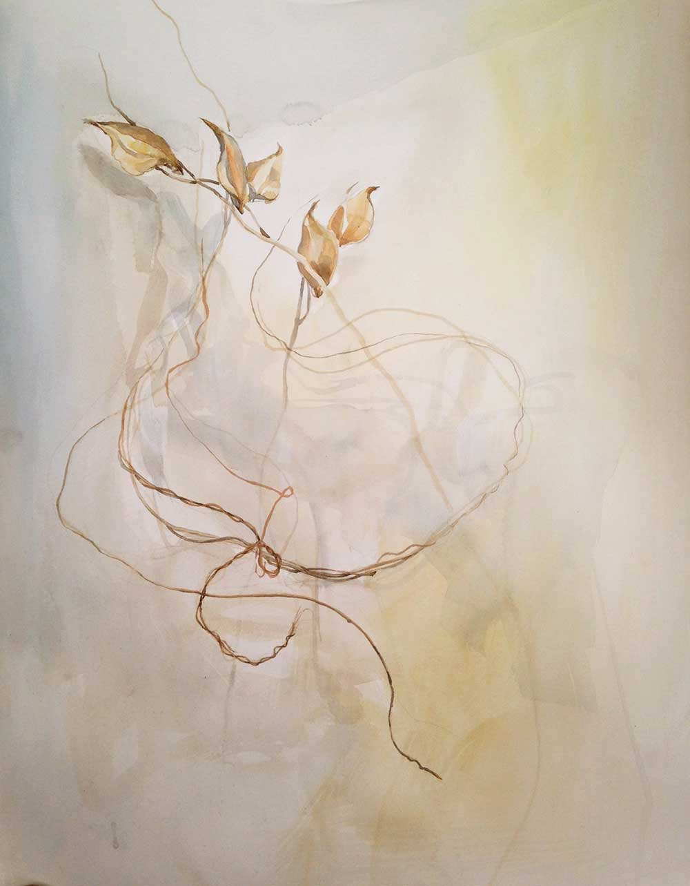 milkweed, vines, watercolor painting, Coco Connolly, artist