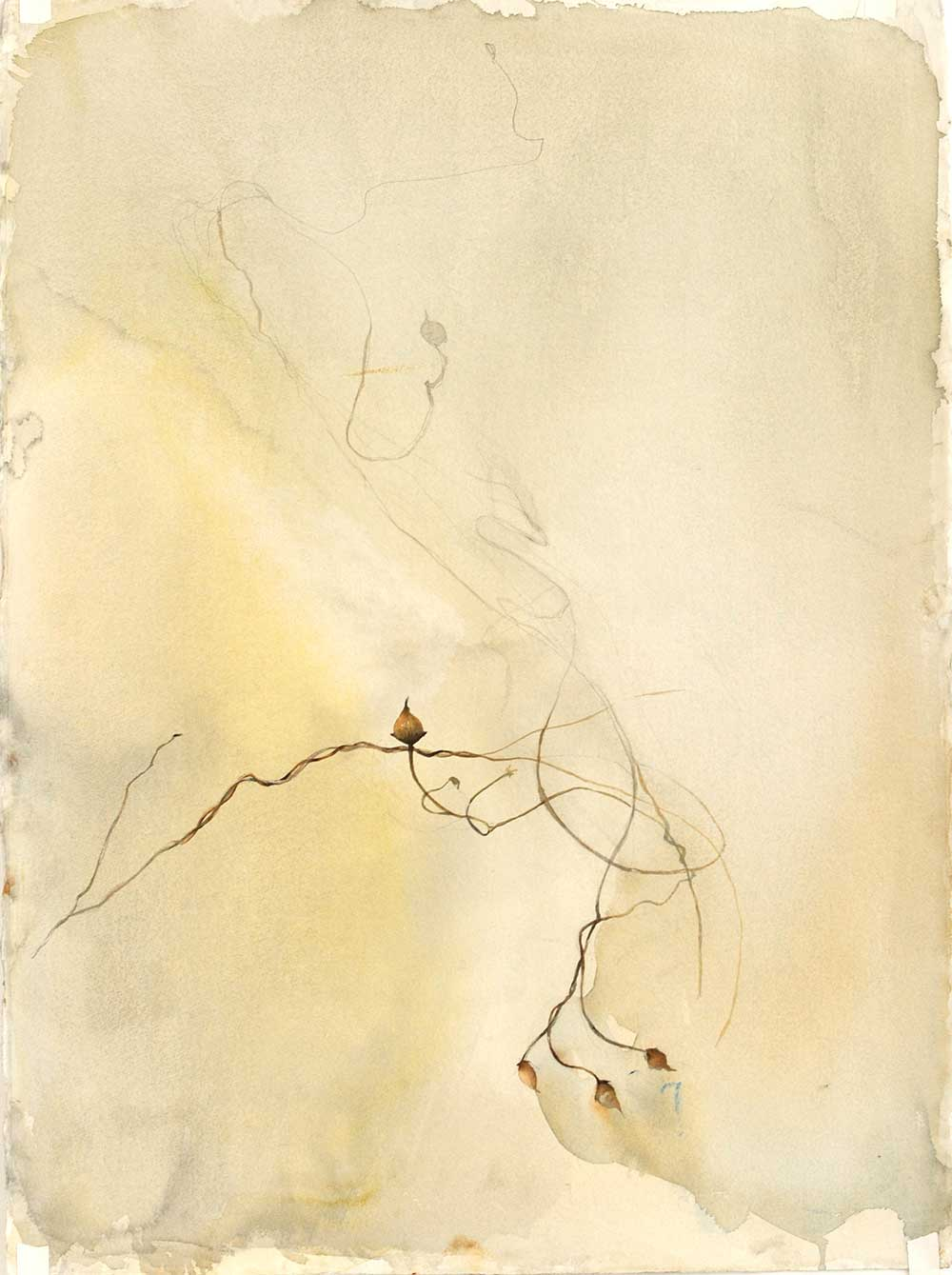 Fall, weeds, earth tones, watercolor painting, Coco Connolly, artist