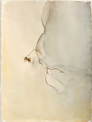 Fall, earth tones, watercolor painting, Coco Connolly, artist