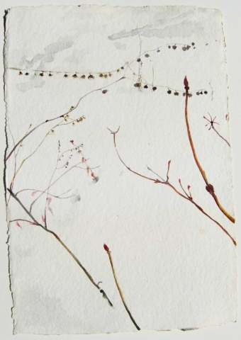 watercolor, weeds in snow, Coco Connolly, artist